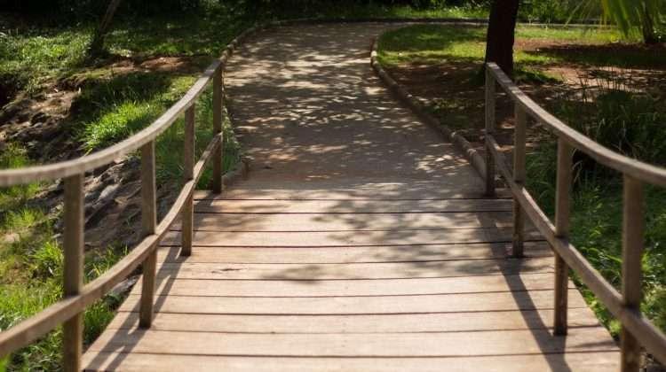 Parque Aggeo Pio Sobrinho- ponte sobre um dos fluxos de água do Córrego Cercadinho - Foto: William Araújo