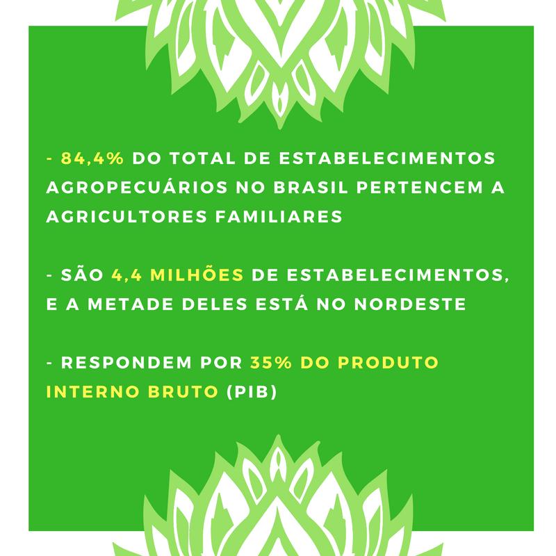 Estatísticas Censo Agropecuário de 2006, IBGE